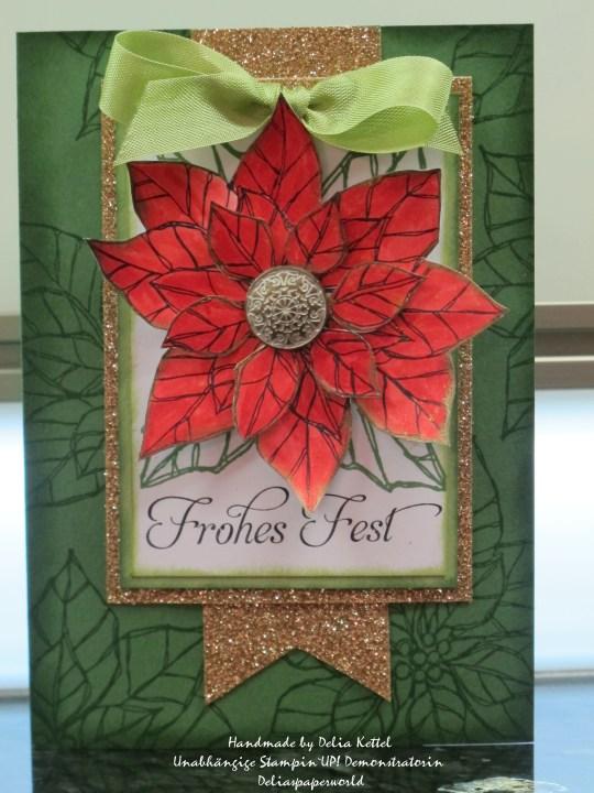 Weihnachsstern rot-grün