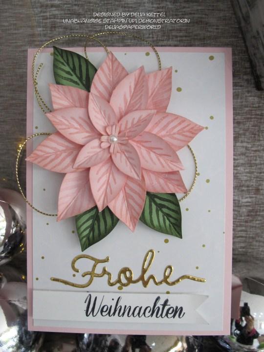 Weihnachtskarte Poinsettia 1 Delia Kettel