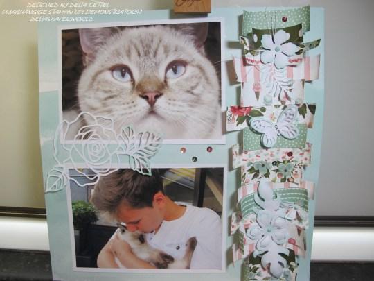 Doppellayout Katzen 5