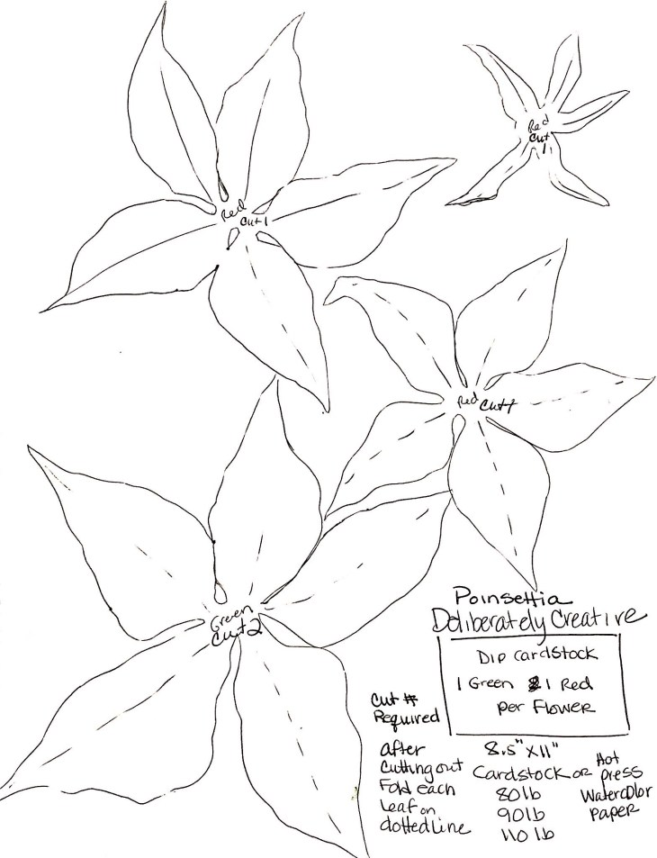 black line template pattern for poinsettia flowers