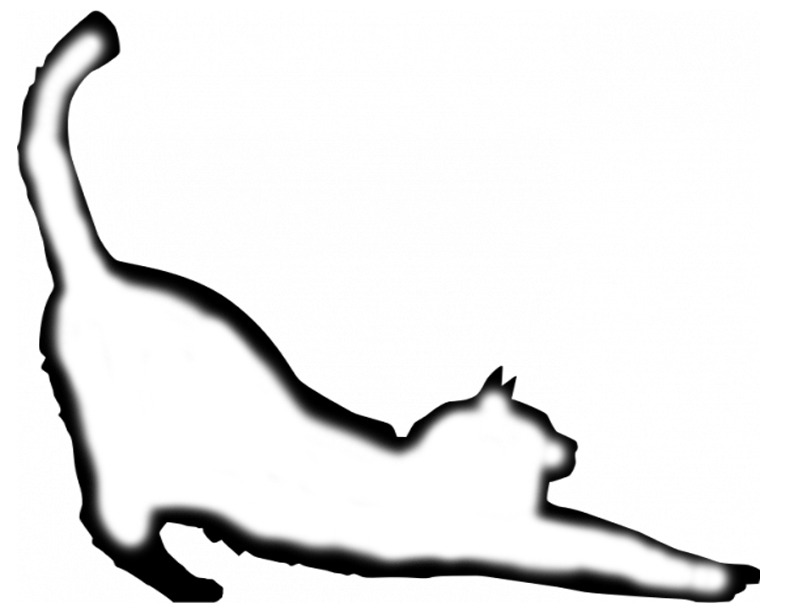 Cat Stretching template from Pouring and Masking Video