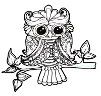 Black and white doodle owl image