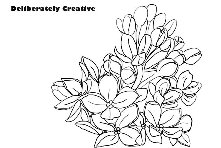 Lilac flowers black line drawing