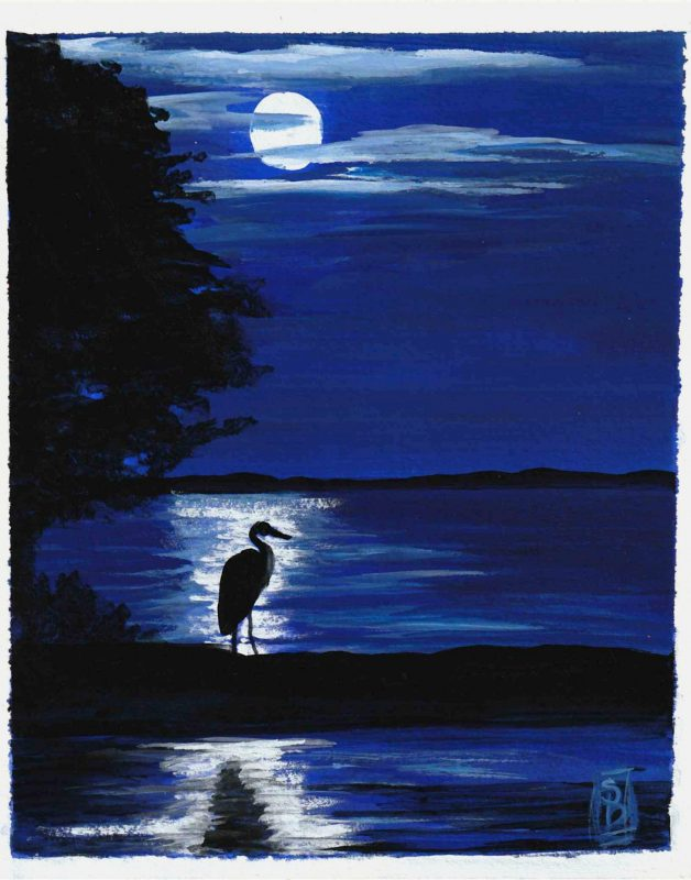 Night Magic<br><strong>sold</strong>