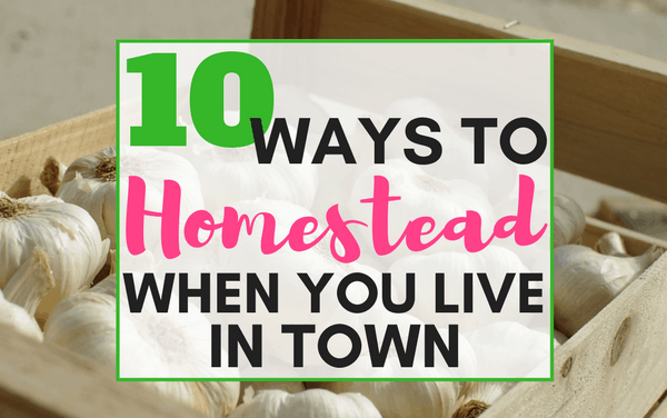 How to Homestead When You Live in Town