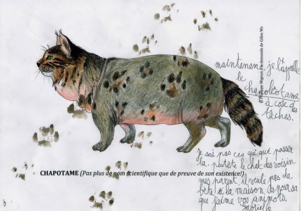 Le chapotame colorié par Gabrielle sur un dessin original de Philippe Mignon