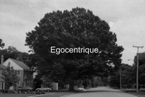 How Jung Are You? Égocentrique © Gregg Ellis
