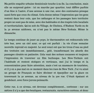 Antoine de Baecque, un marcheur à New York, chapitre 8