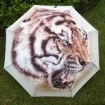 Tigrovich et son parapluie