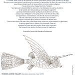 Coloriage – Le poisson-coffre volant © Philippe Mignon