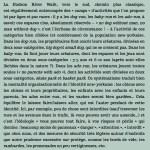 Degré zéro: Un marcheur à New York. Journal d'exploration urbaine (hiver 2016-2017), chapitre 14. Par Antoine de Baecque