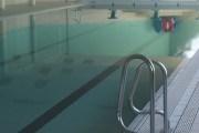 La hargne de l'anoure des piscines