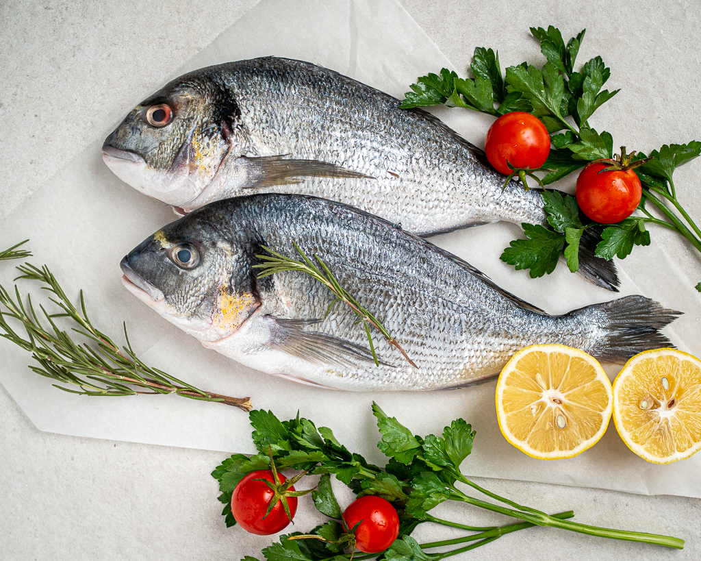 description of sea bream