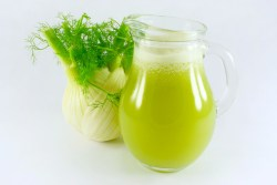 fennel-juice