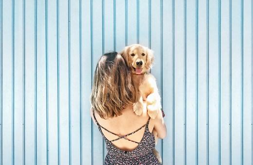 5 técnicas para tirar boas fotos de cachorro