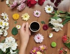 Café e flores jejum intermitente