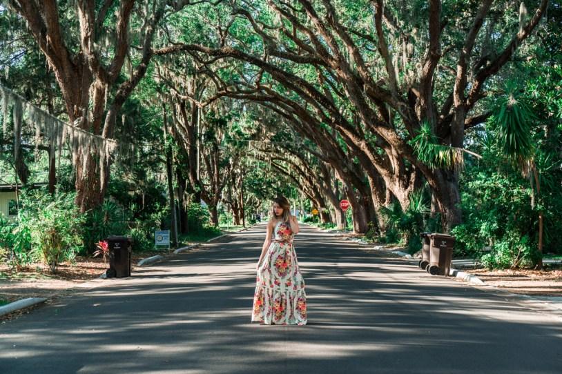 Magnolia Avenue em St Augustine, nos Estados Unidos