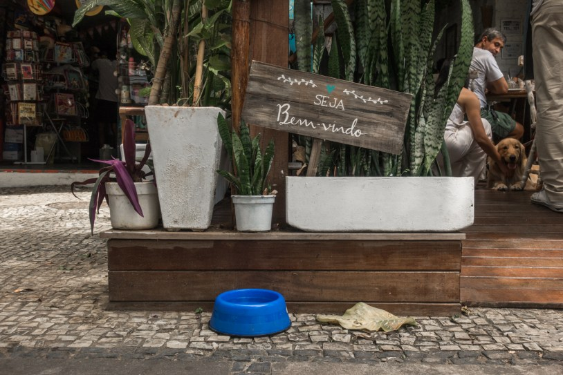Restaurante Casa Graviola, no Rio de Janeiro, aceita cachorros. Por Delicia de Blog.
