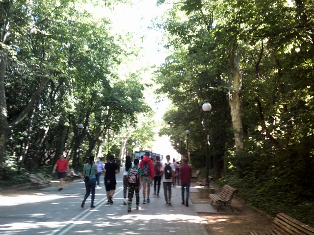 Grupo de espaldas en el Paseo Central del Campo Grande