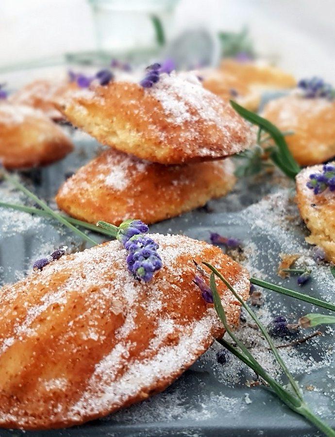 Lavendel- Vanille- Madeleines