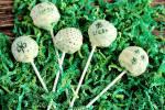 St. Patrick's Day inspired Green Cake Pops