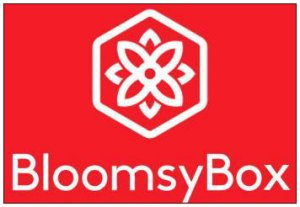 BloomsyBoxLogo111111