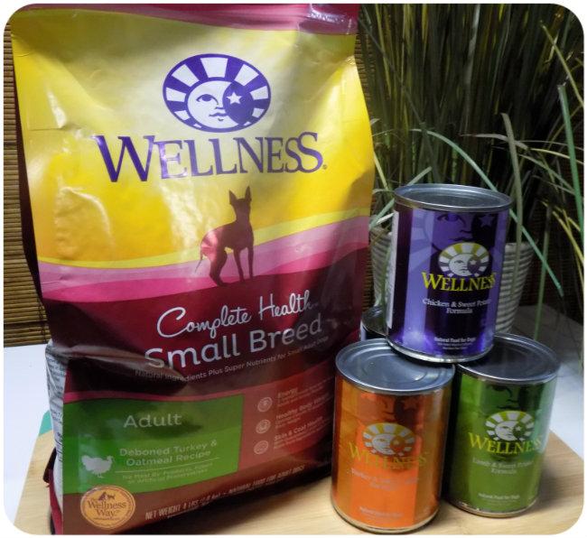 wellness22