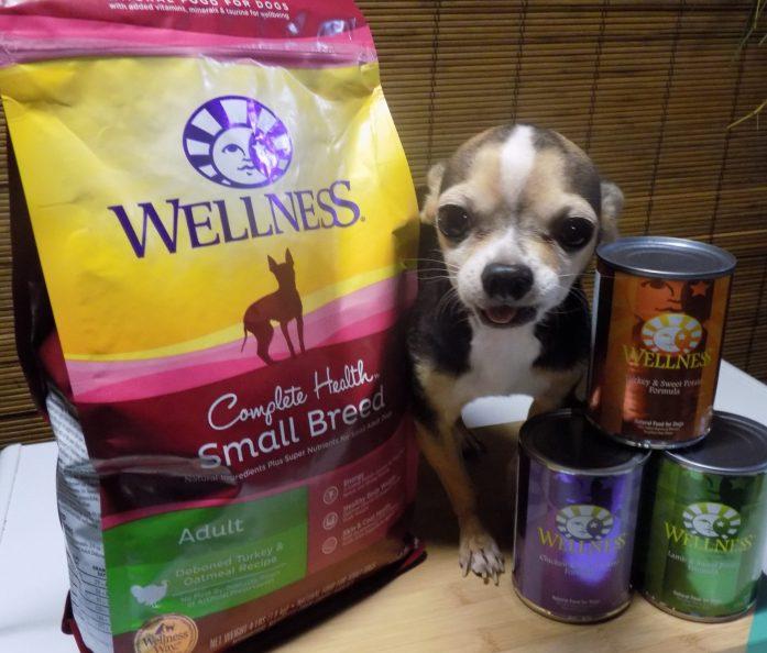 wellness1111111