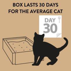 tidycats44