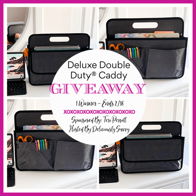 Deluxe Double Duty® Caddy Giveaway ~ 2/16 @TotesByTeri @deliciouslysavv #MySillyLittleGang