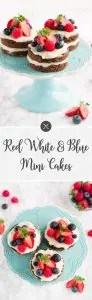 Red White and Blue Mini Cakes