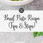 basil pesto recipe - long pin