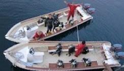 best-diving-liveaboard-indonesia-komodo-alor-raja-ampat-banda-sea-moluccas-papua-ambon-arenui-11