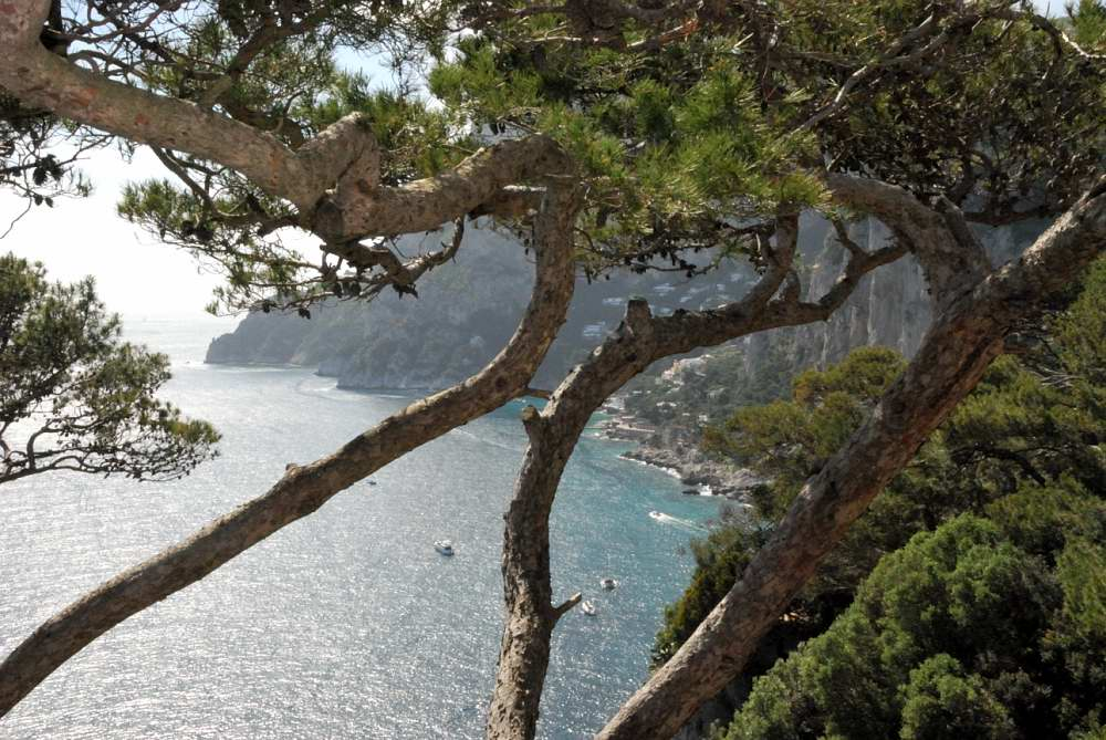 Italy in 4 weeks Capri