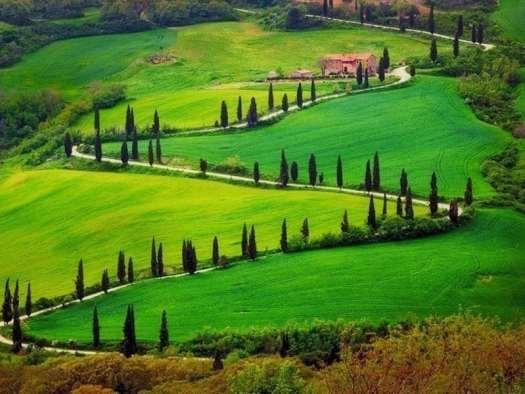 Drive in Italy_Tuscany