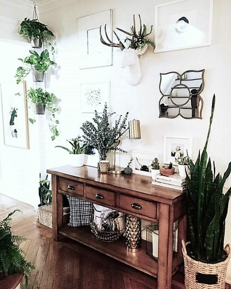 plant-goodness