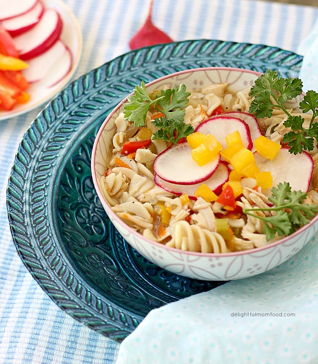 Rainbow Chicken Noodle Soup