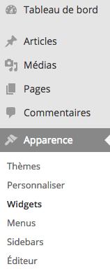 Comment accéder aux Widgets de WordPress ?