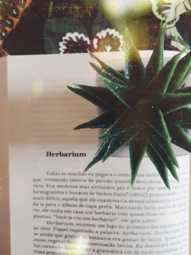 Herbarium, Os Contos, Companhia das Letras