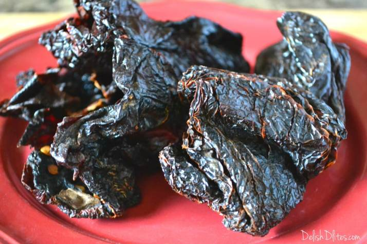 Ancho Chile-Rubbed Skirt Steak | Delish D'Lites