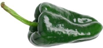chile-poblano