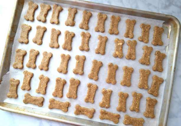 Oatmeal Peanut Butter & Blueberry Dog Treats | Delish D'Lites