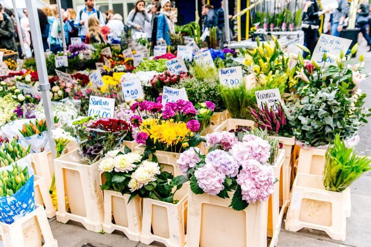 arrangement-beautiful-bloom-709824