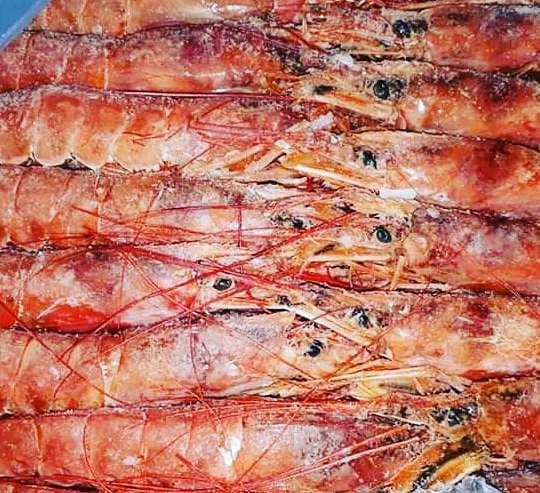 Langostinos-enteros-nro-1-Dick-Fish-Compra-y-Venta-Argentina