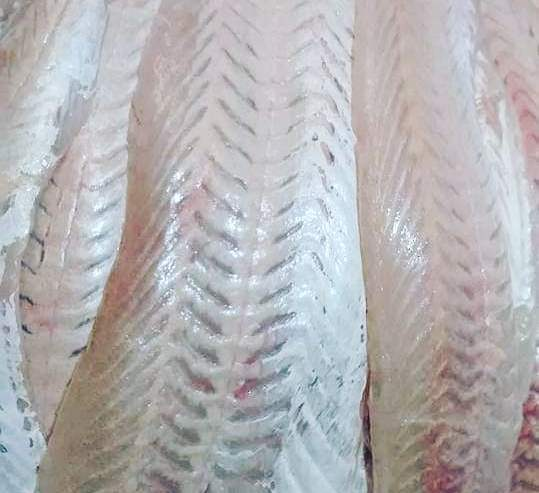 filet-de-merluza-Dick-Fish-Compra-y-Venta-Argentina