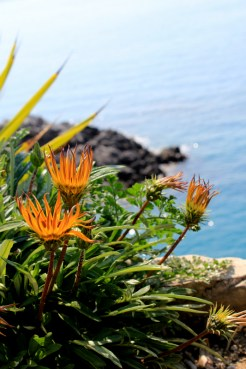 Amalfi coast Photo Gallery 5