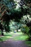 parco 2