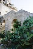 torre_colimena_5