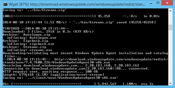 WSUS Command Prompt