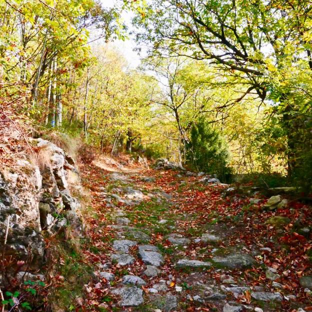 Sentier de randonnée, automne, Ardèche.